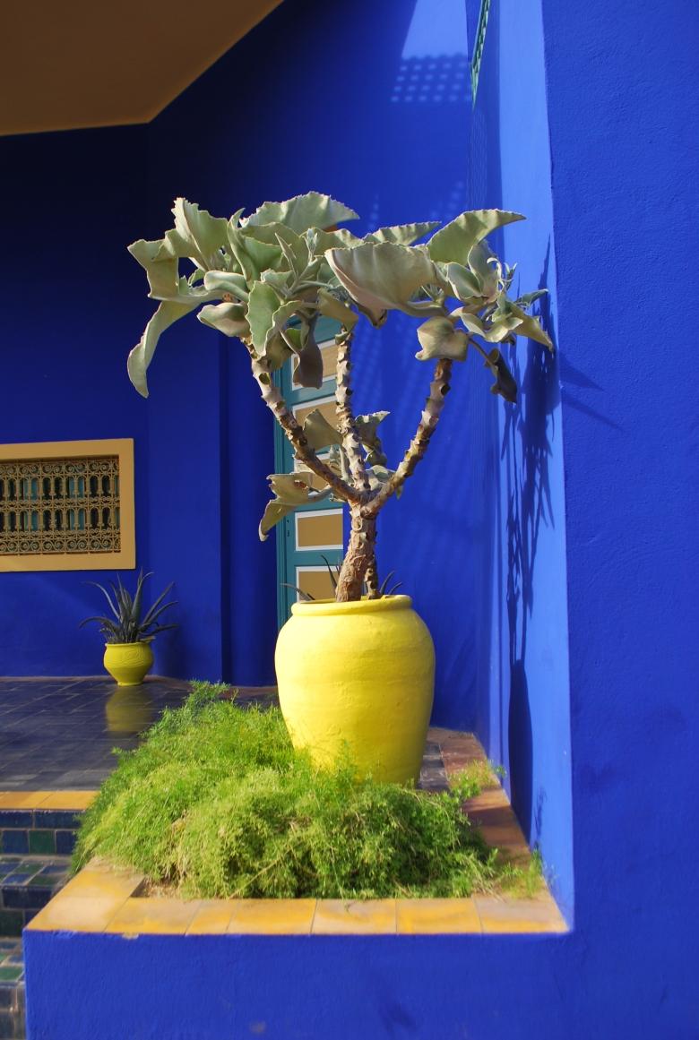 jardin de majorelle marrakech