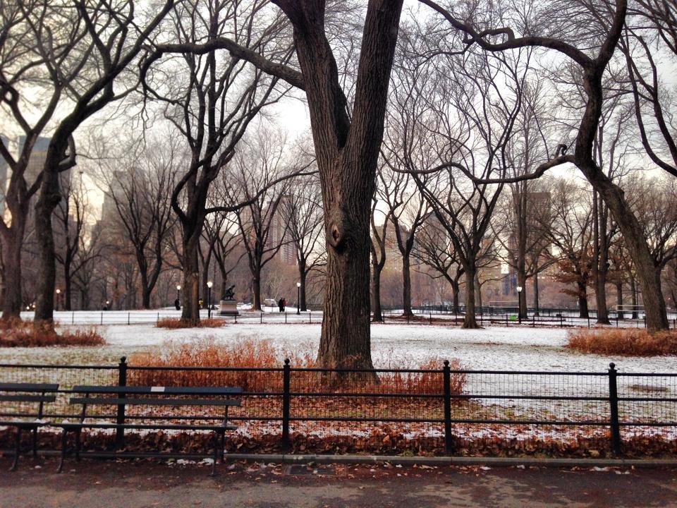Central Park sous la neige © Travel-me-happy.com